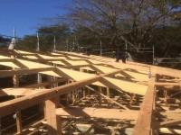 屋根を支える為の垂木施工中